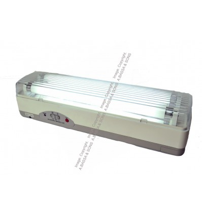 RECHARGEABLE LIGHTS 233 2X10W